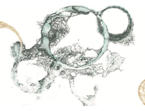 Projet Multiprise : l'art s'invite au sein de notre agence Skilz